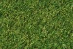 B05/0I080 - Verde Muschio